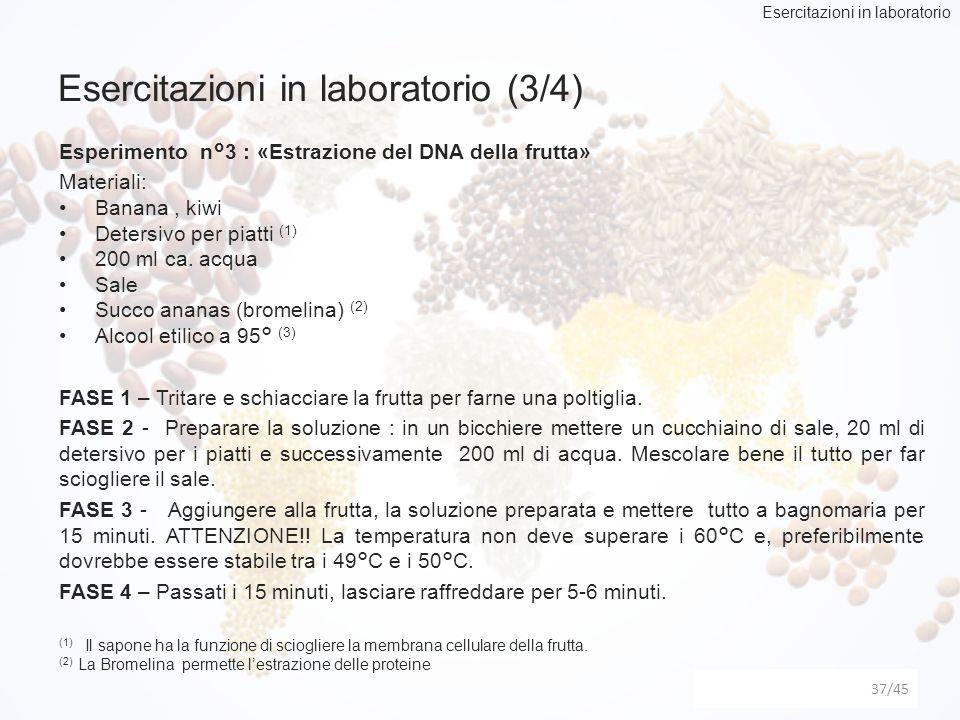 Esercitazioni in laboratorio (3/4)