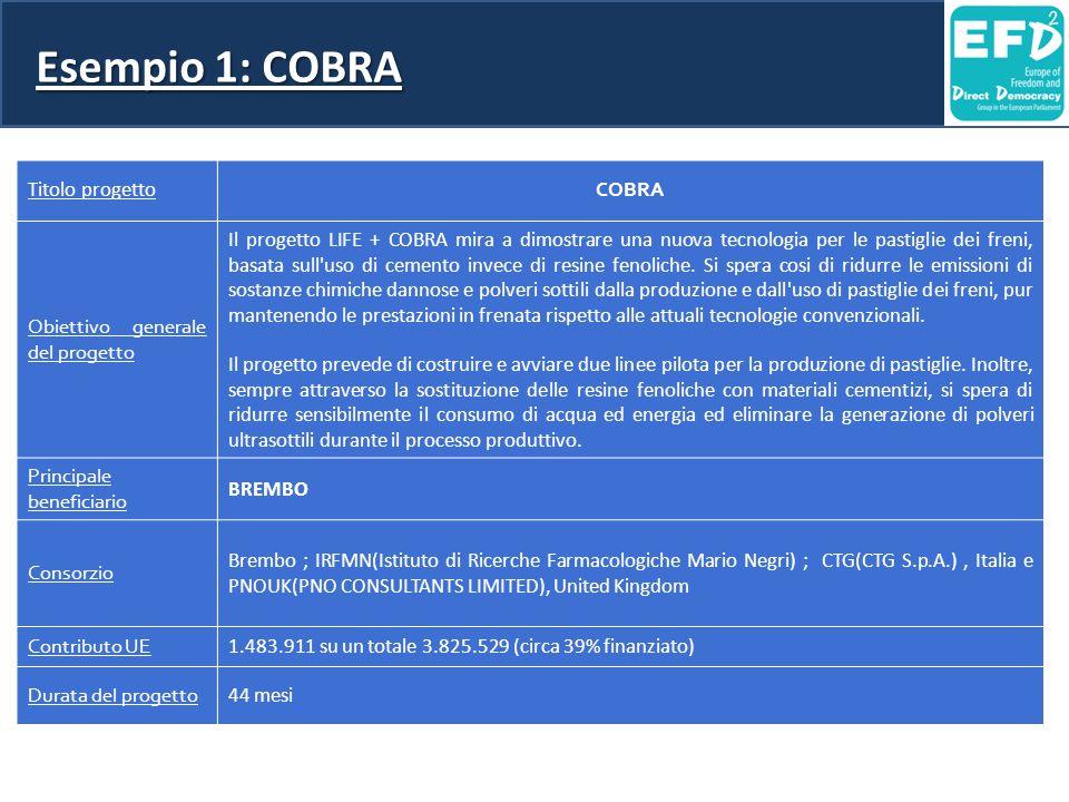 Esempio 1: COBRA Titolo progetto COBRA Obiettivo generale del progetto