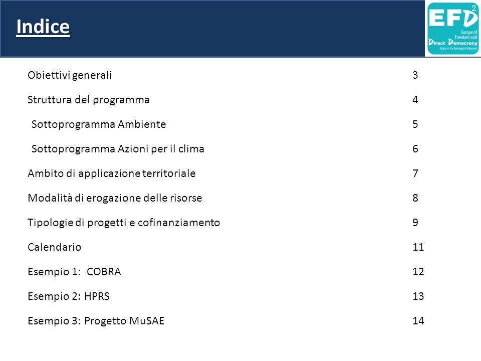 Indice Obiettivi generali 3 Struttura del programma 4