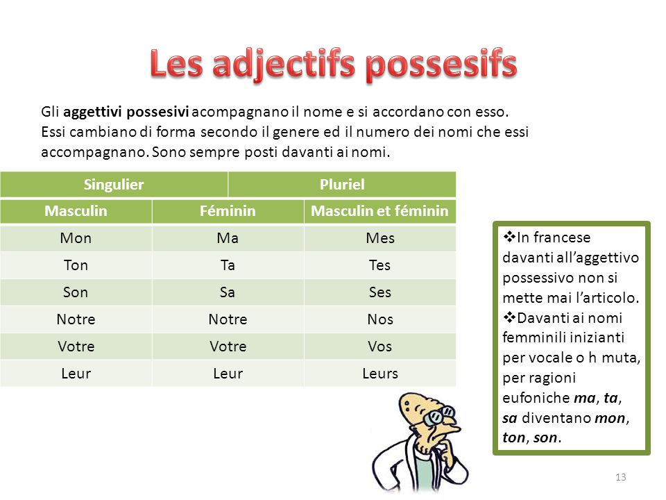 Les adjectifs possesifs