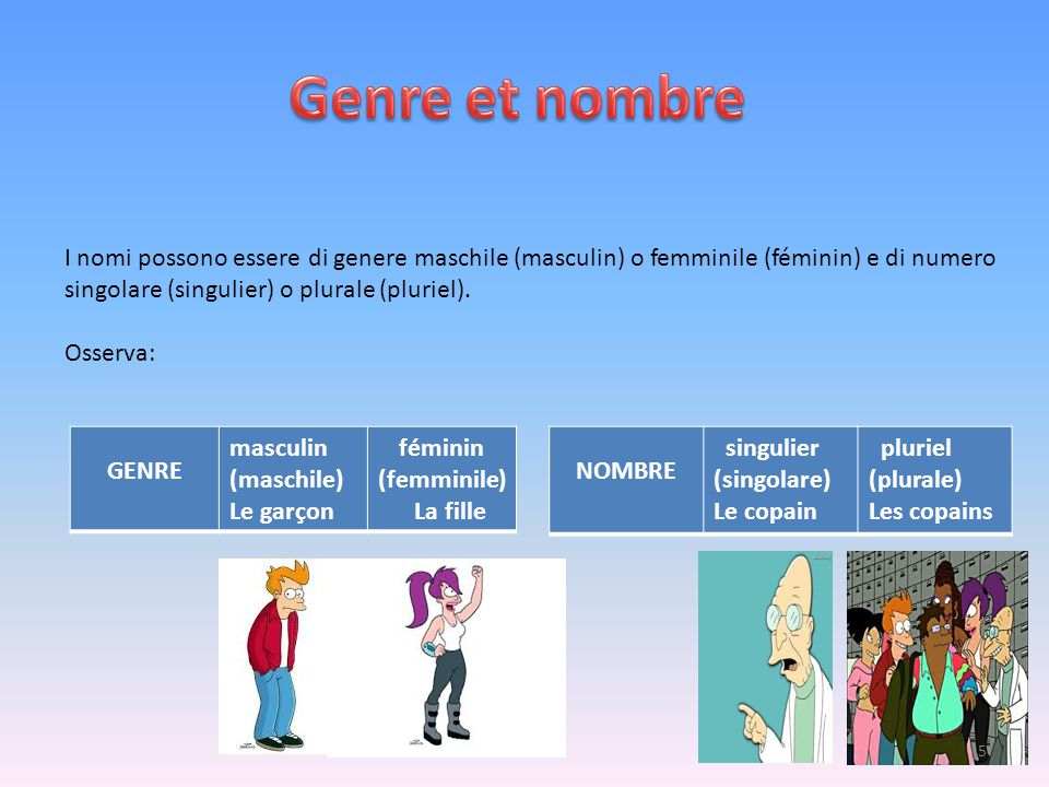 Genre et nombre I nomi possono essere di genere maschile (masculin) o femminile (féminin) e di numero.