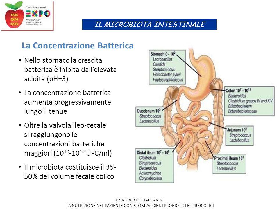 La Concentrazione Batterica