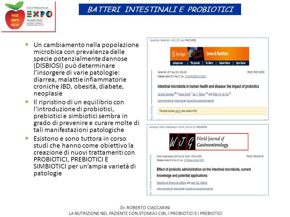 BATTERI INTESTINALI E PROBIOTICI