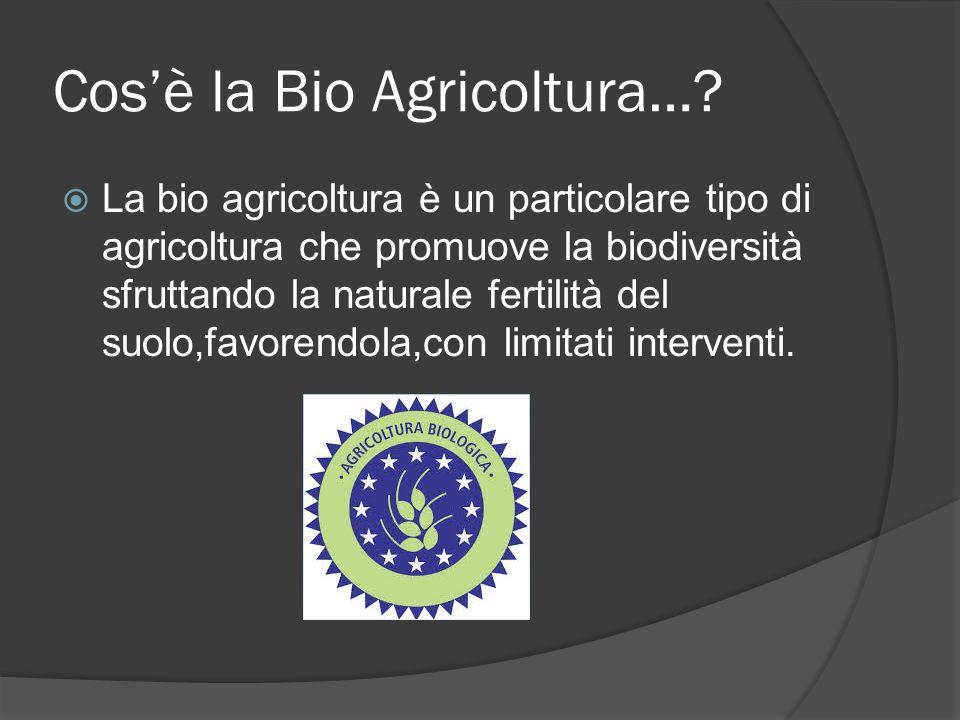 Cos'è la Bio Agricoltura…