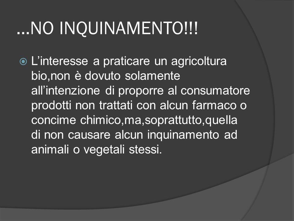 …NO INQUINAMENTO!!!