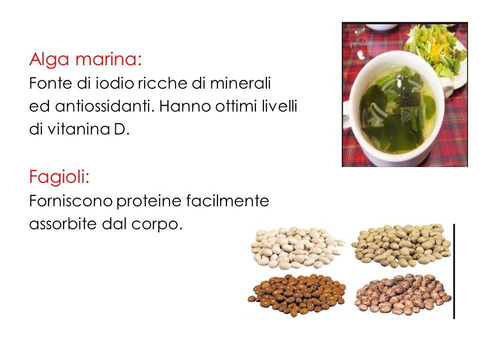 Alga marina: Fagioli: Fonte di iodio ricche di minerali