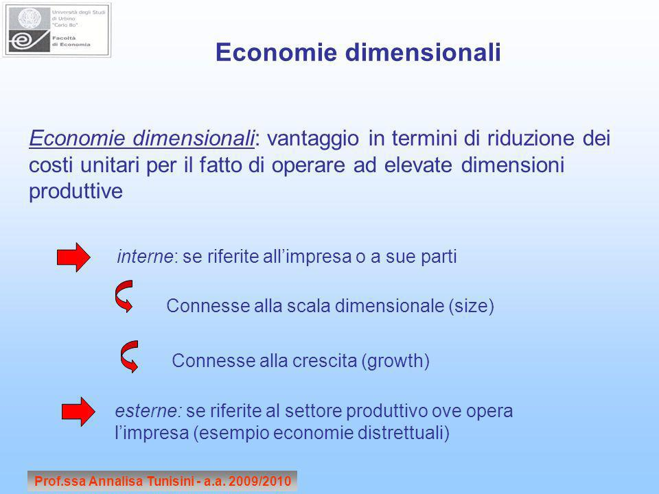 Economie dimensionali Prof.ssa Annalisa Tunisini - a.a. 2009/2010