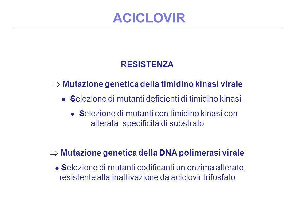 ACICLOVIR RESISTENZA  Mutazione genetica della timidino kinasi virale