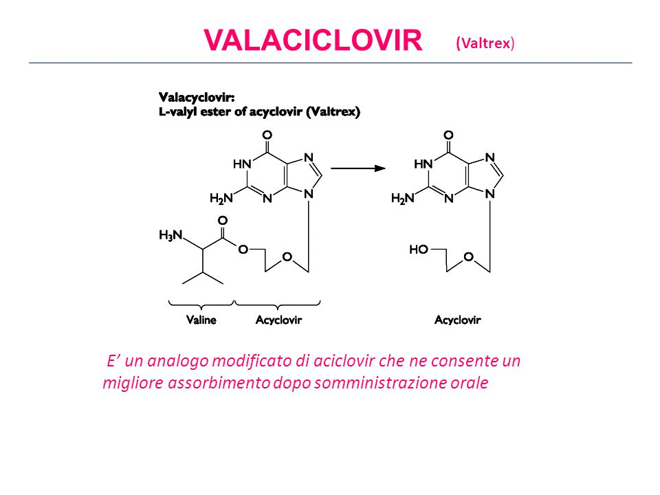 VALACICLOVIR (Valtrex) E' un analogo modificato di aciclovir che ne consente un migliore assorbimento dopo somministrazione orale.