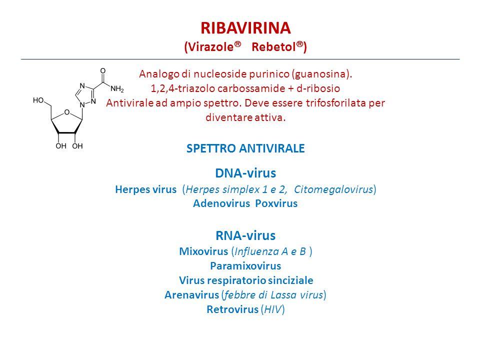 RIBAVIRINA DNA-virus RNA-virus (Virazole Rebetol) SPETTRO ANTIVIRALE