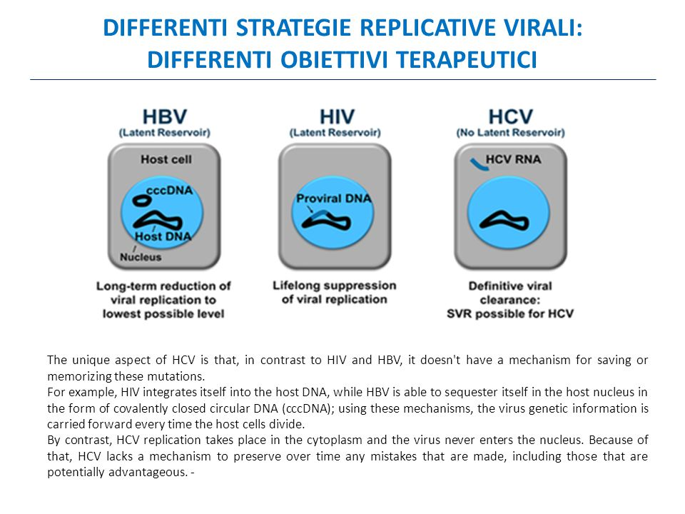 DIFFERENTI STRATEGIE REPLICATIVE VIRALI:
