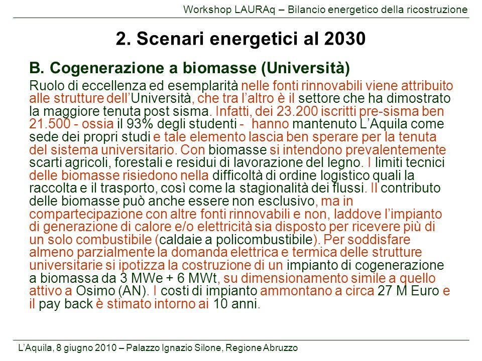 2. Scenari energetici al 2030 B. Cogenerazione a biomasse (Università)