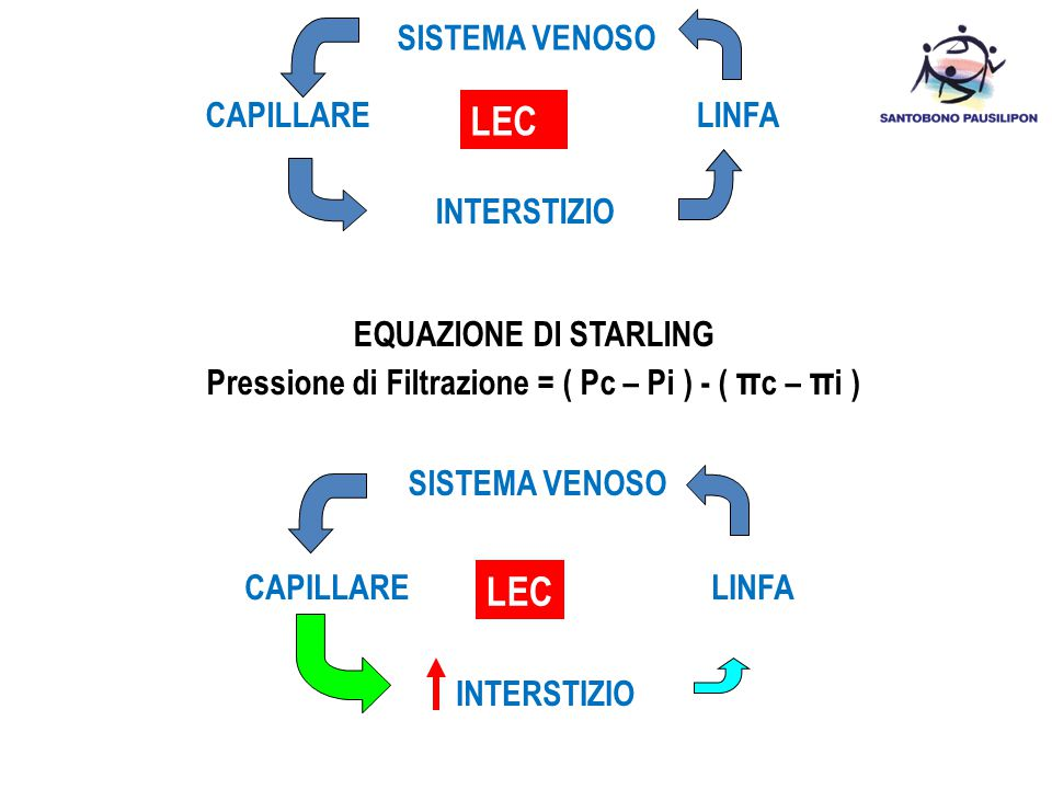 Pressione di Filtrazione = ( Pc – Pi ) - ( πc – πi )