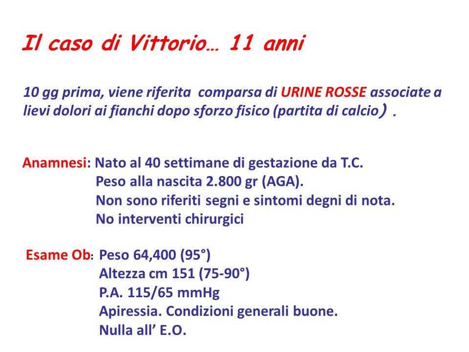 Il caso di Vittorio… 11 anni