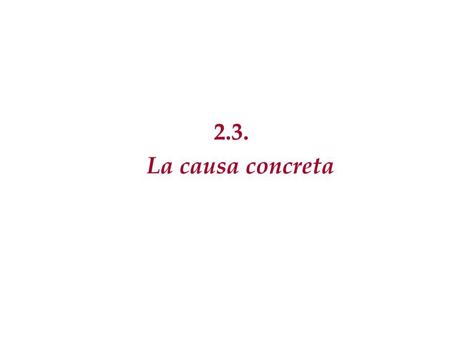 2.3. La causa concreta 72