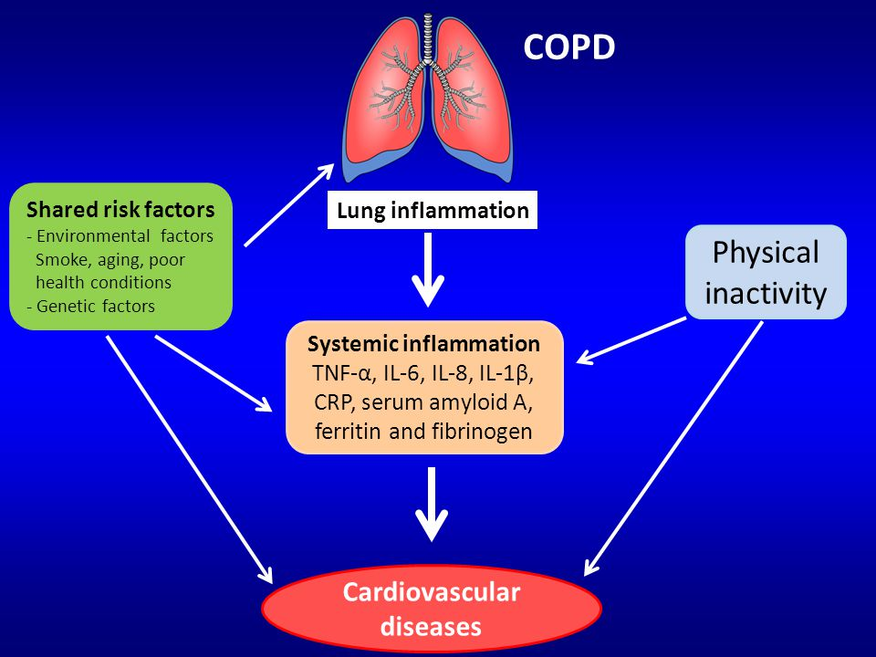 Systemic inflammation Cardiovascular diseases