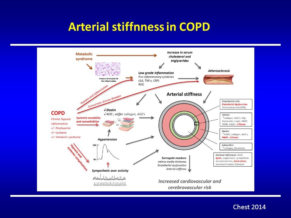 Arterial stiffnness in COPD