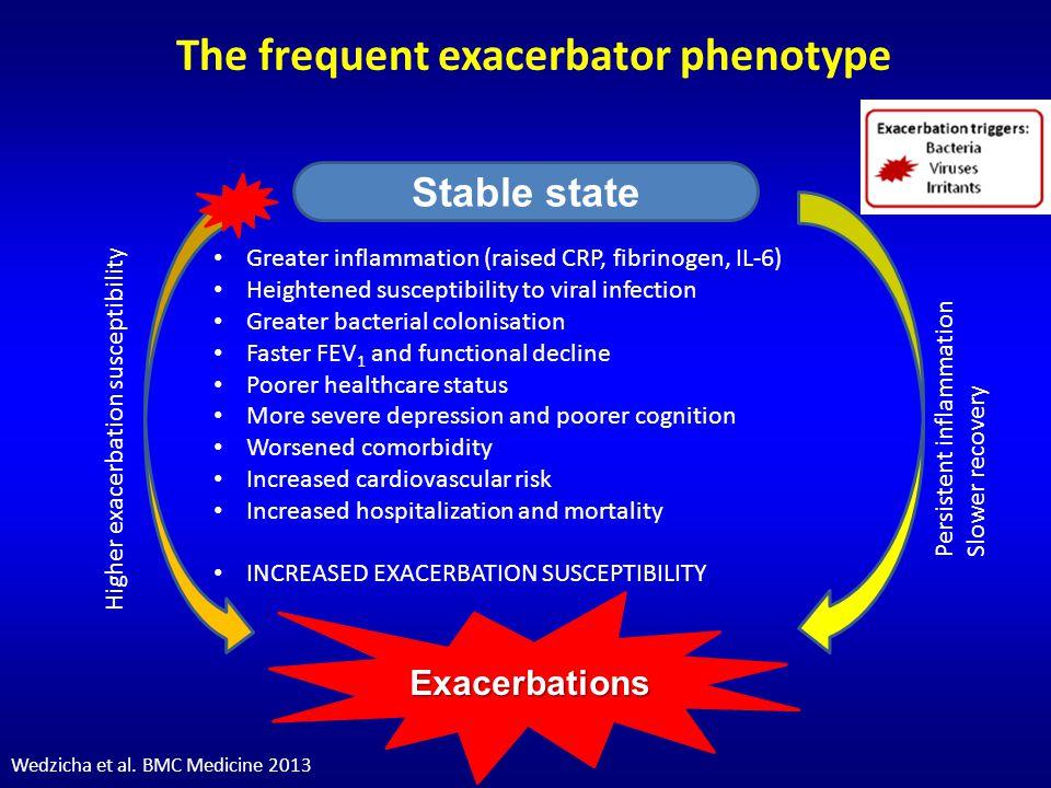 The frequent exacerbator phenotype