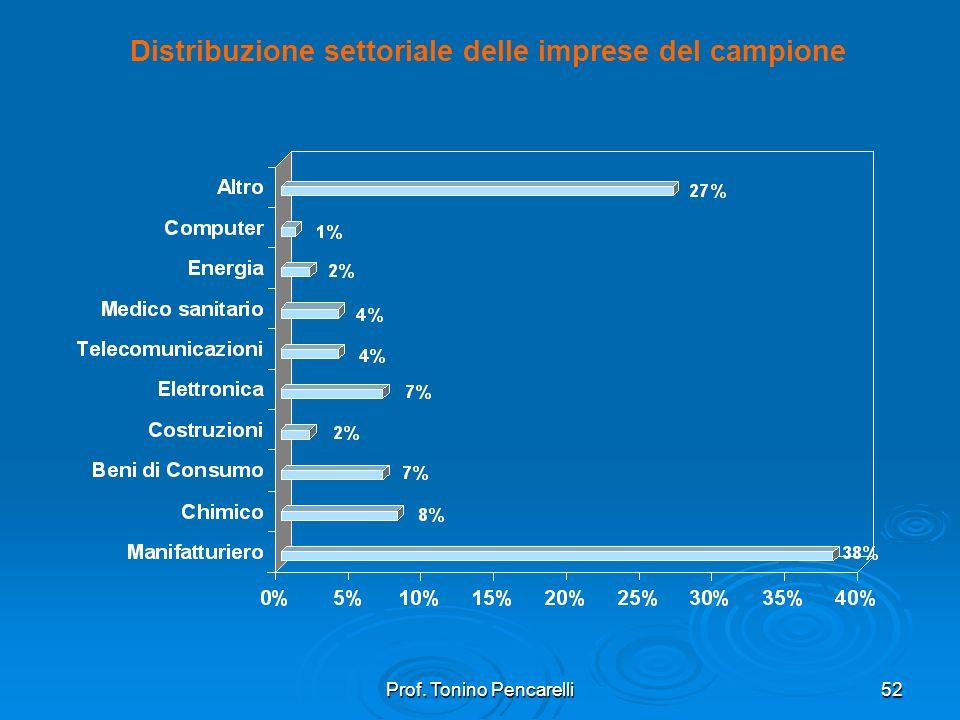 Distribuzione settoriale delle imprese del campione