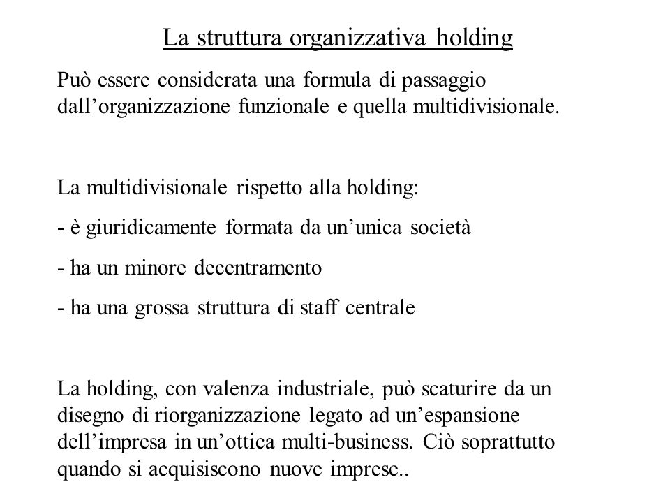 La struttura organizzativa holding