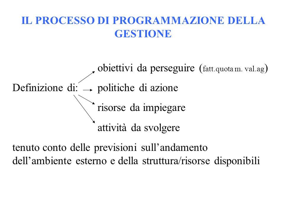 IL PROCESSO DI PROGRAMMAZIONE DELLA GESTIONE