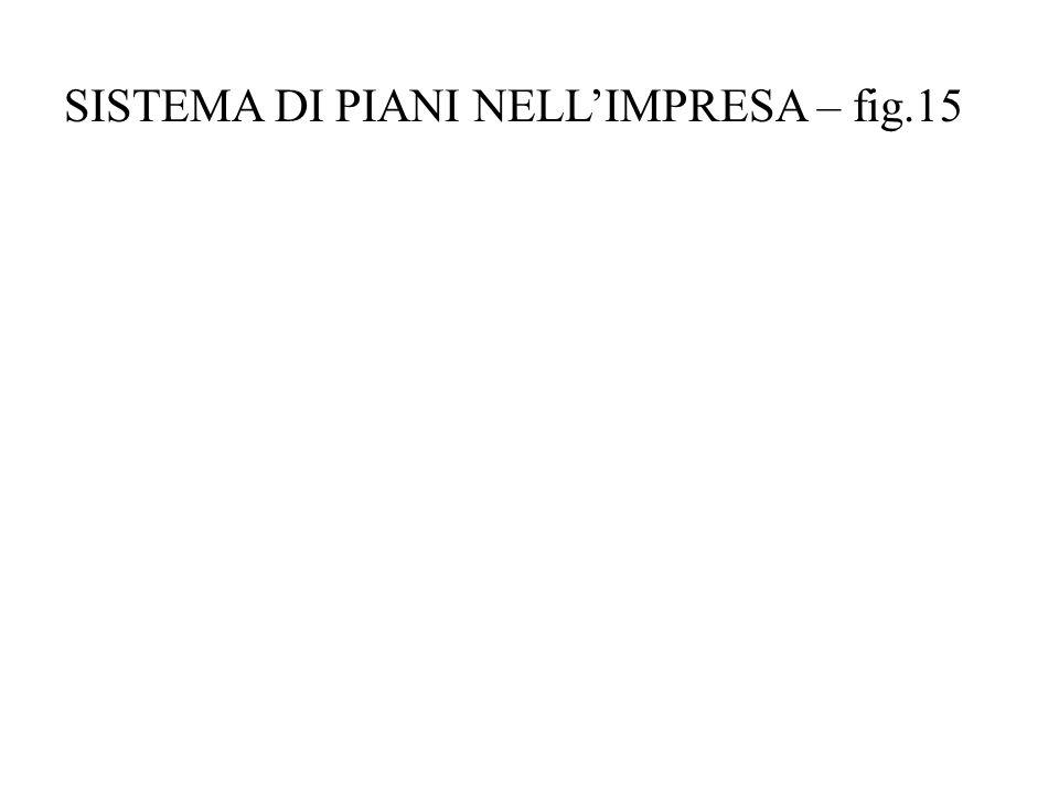SISTEMA DI PIANI NELL'IMPRESA – fig.15