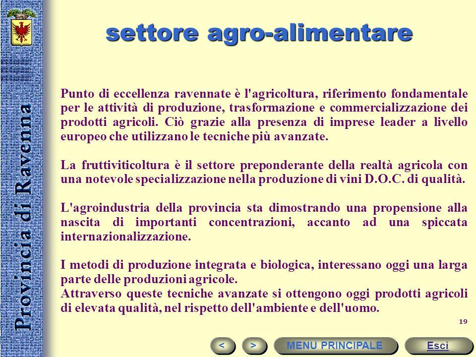 settore agro-alimentare
