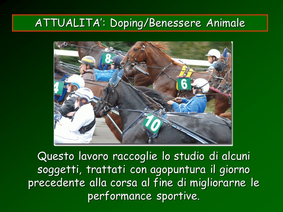 ATTUALITA': Doping/Benessere Animale