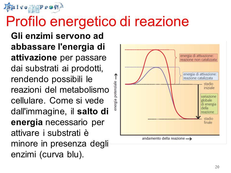 Profilo energetico di reazione