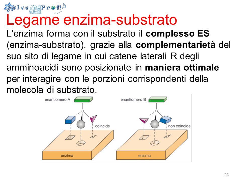 Legame enzima-substrato