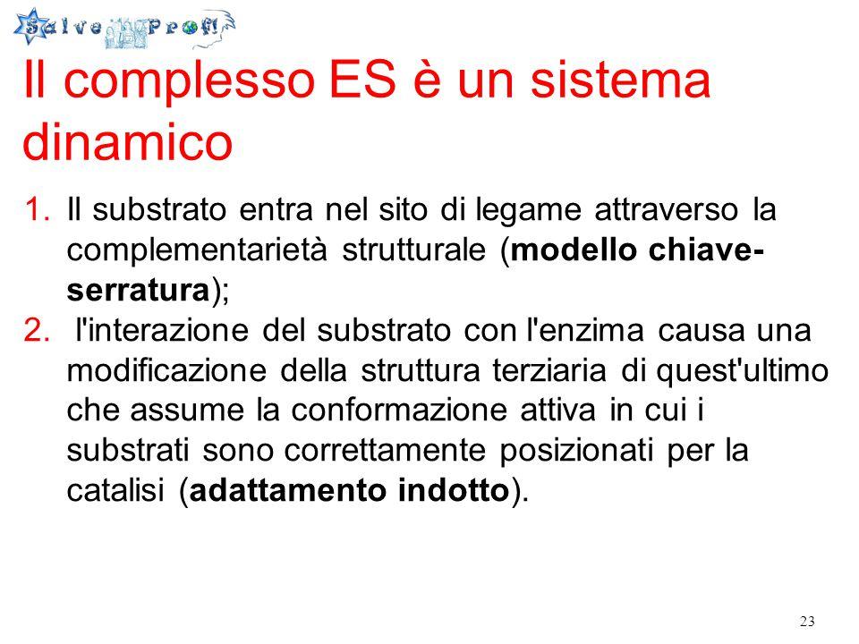 Il complesso ES è un sistema dinamico