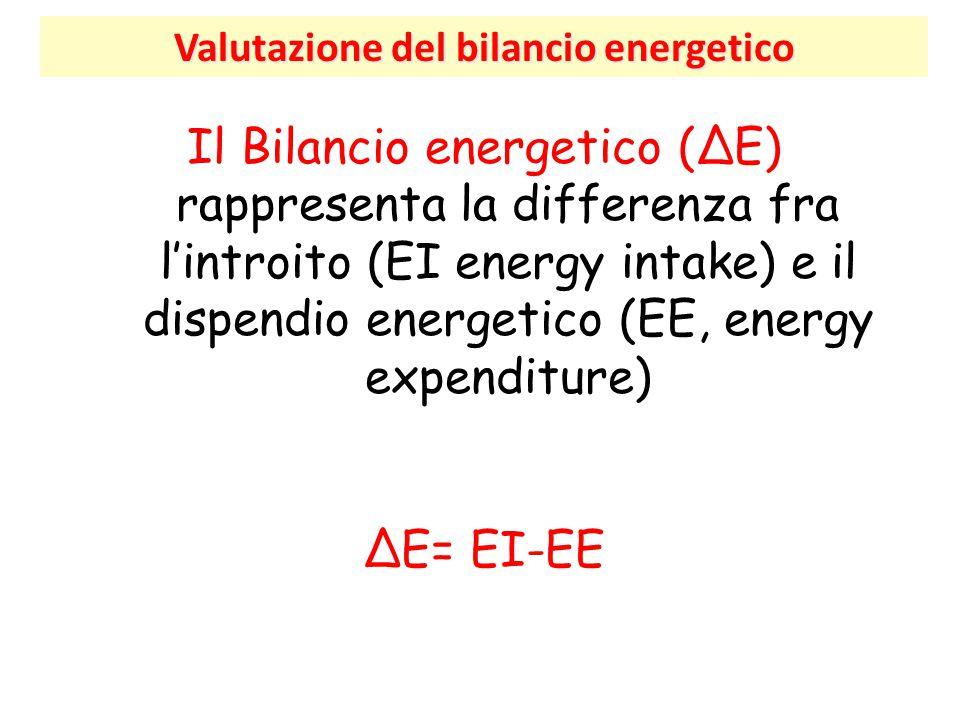 Valutazione del bilancio energetico