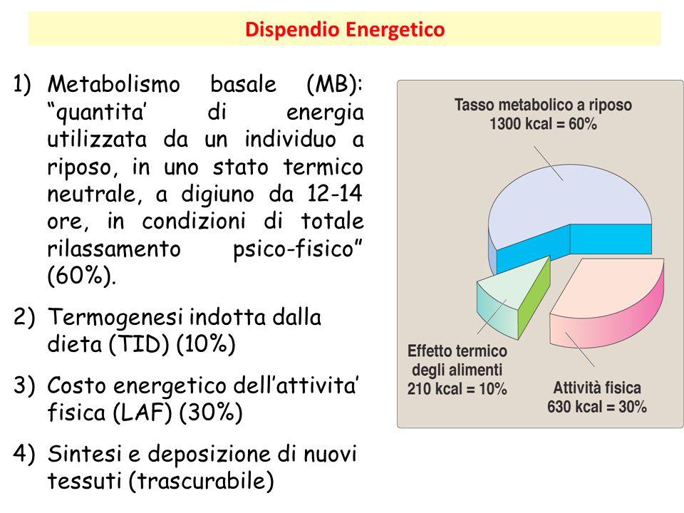 Termogenesi indotta dalla dieta (TID) (10%)