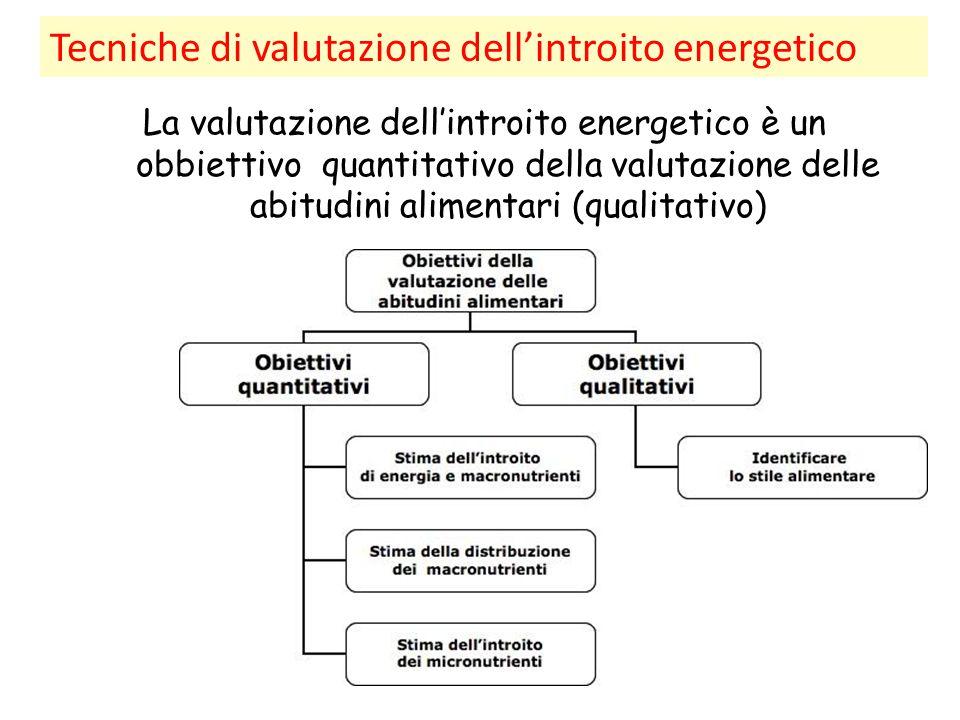 Tecniche di valutazione dell'introito energetico