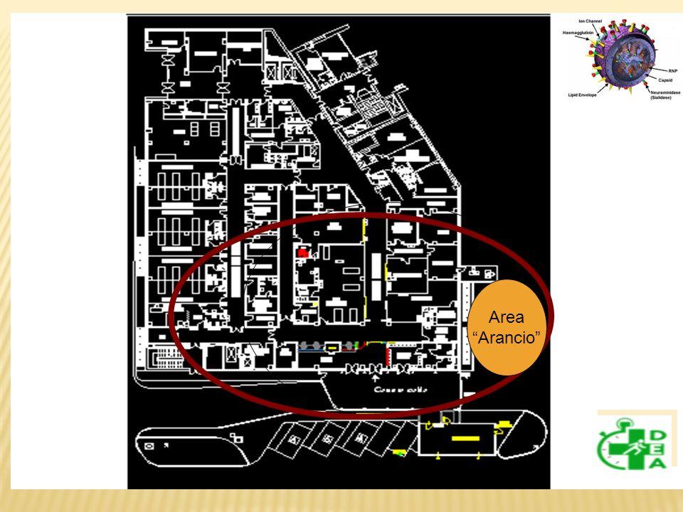 Area Arancio 26