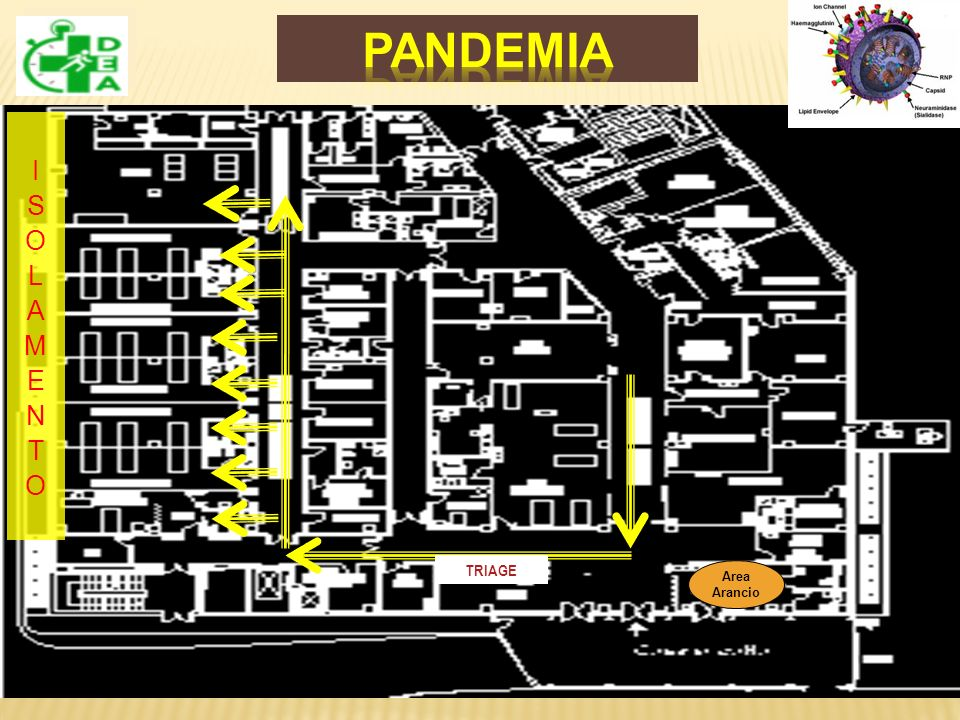 PANDEMIA ISOLAMENTO TRIAGE Area Arancio