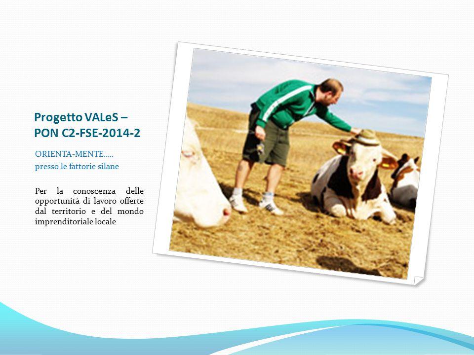 Progetto VALeS – PON C2-FSE-2014-2