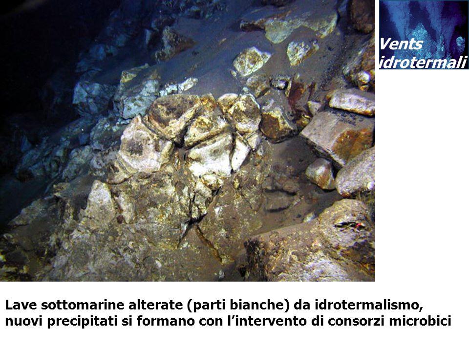 Vents idrotermali Vents idrotermali