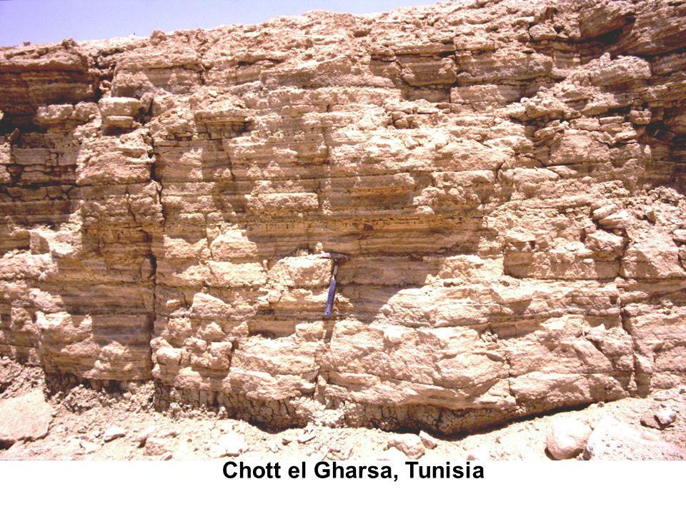 Chott el Gharsa, Tunisia