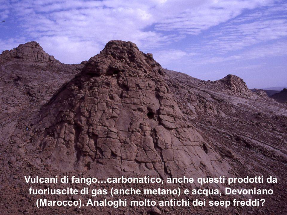 Vulcani di fango…carbonatico, anche questi prodotti da