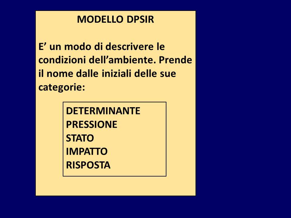 MODELLO DPSIR E' un modo di descrivere le condizioni dell'ambiente. Prende il nome dalle iniziali delle sue categorie: