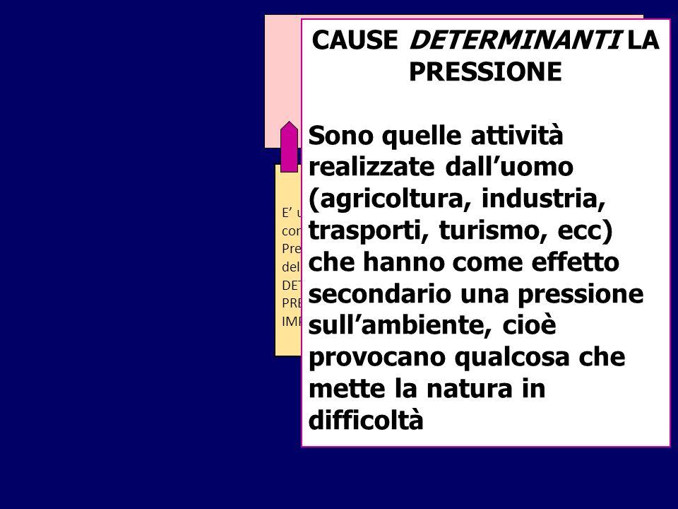 CAUSE DETERMINANTI LA PRESSIONE