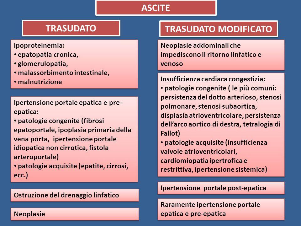 ASCITE TRASUDATO TRASUDATO MODIFICATO