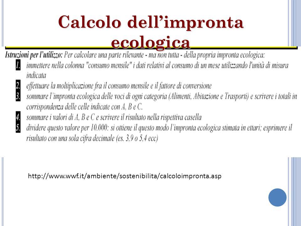 Calcolo dell'impronta ecologica