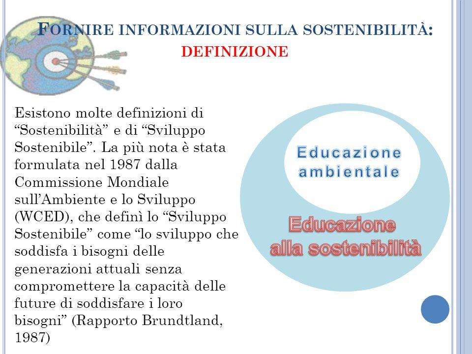 Fornire informazioni sulla sostenibilità: definizione