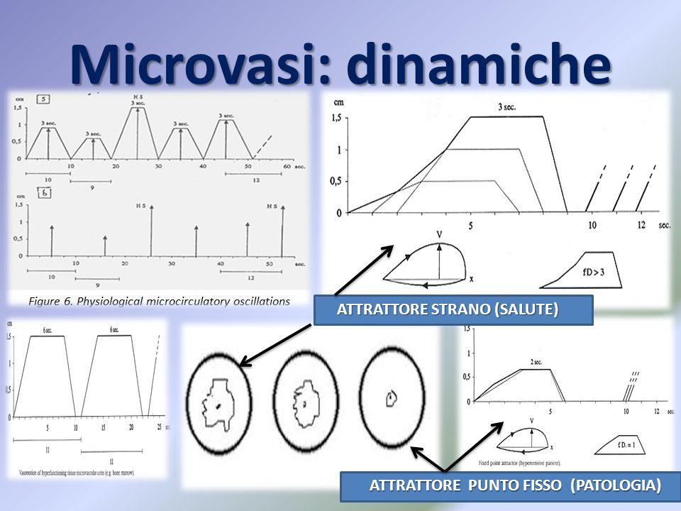 Microvasi: dinamiche ATTRATTORE STRANO (SALUTE)