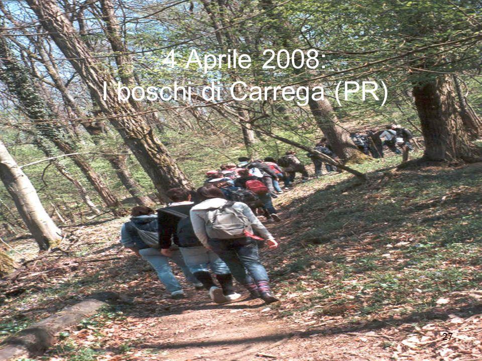 4 Aprile 2008: I boschi di Carrega (PR)