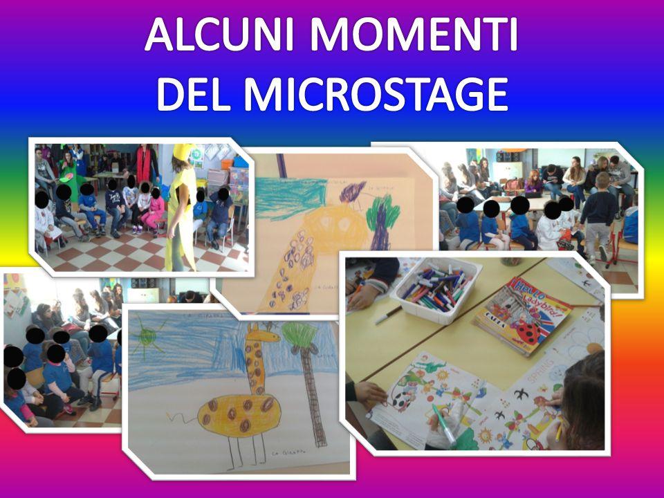ALCUNI MOMENTI DEL MICROSTAGE