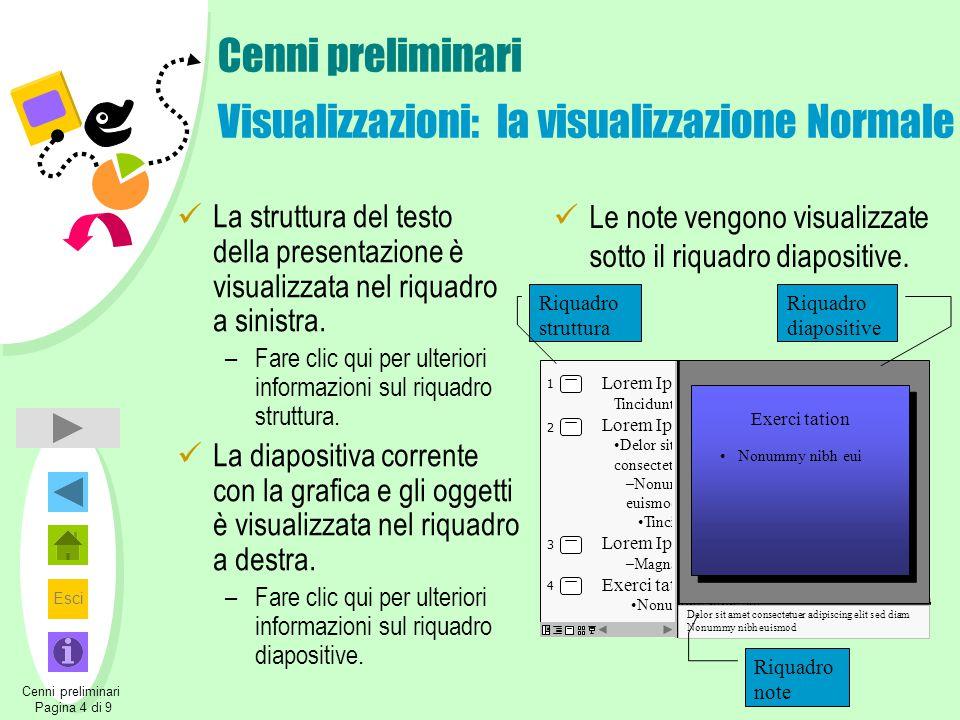 Cenni preliminari Visualizzazioni: la visualizzazione Normale