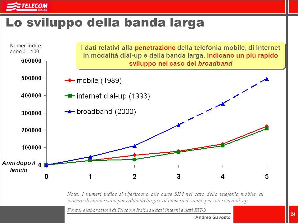 Lo sviluppo della banda larga